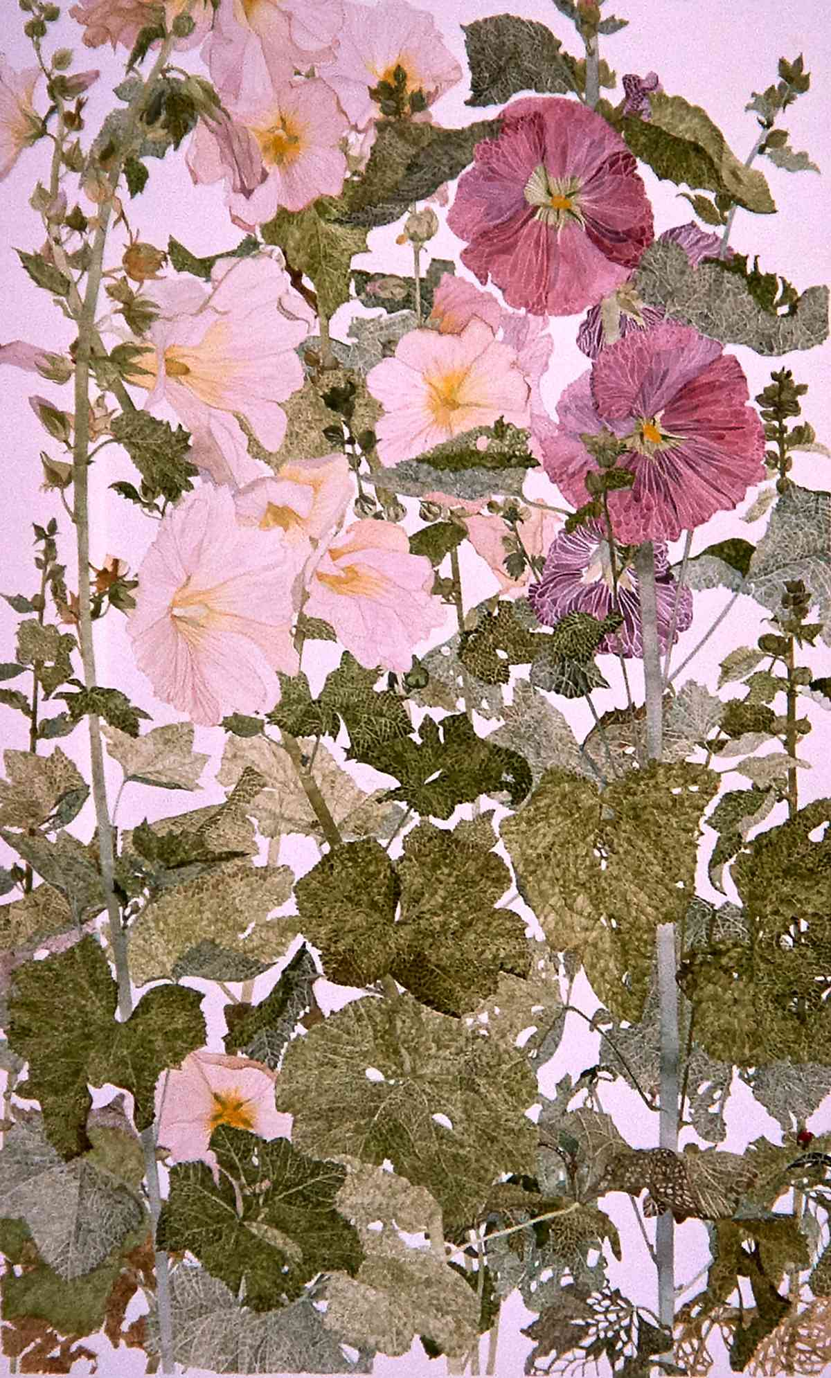Hollyhocks, from Artistic Reflections on the Garden_ water colour_77x57cm