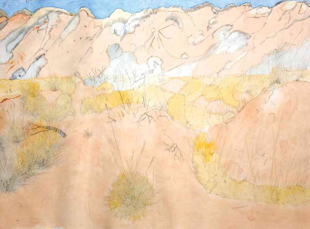 Lobed Spinifex, watercolour, pencil drawing, Concertina Book, 45 X 62cm