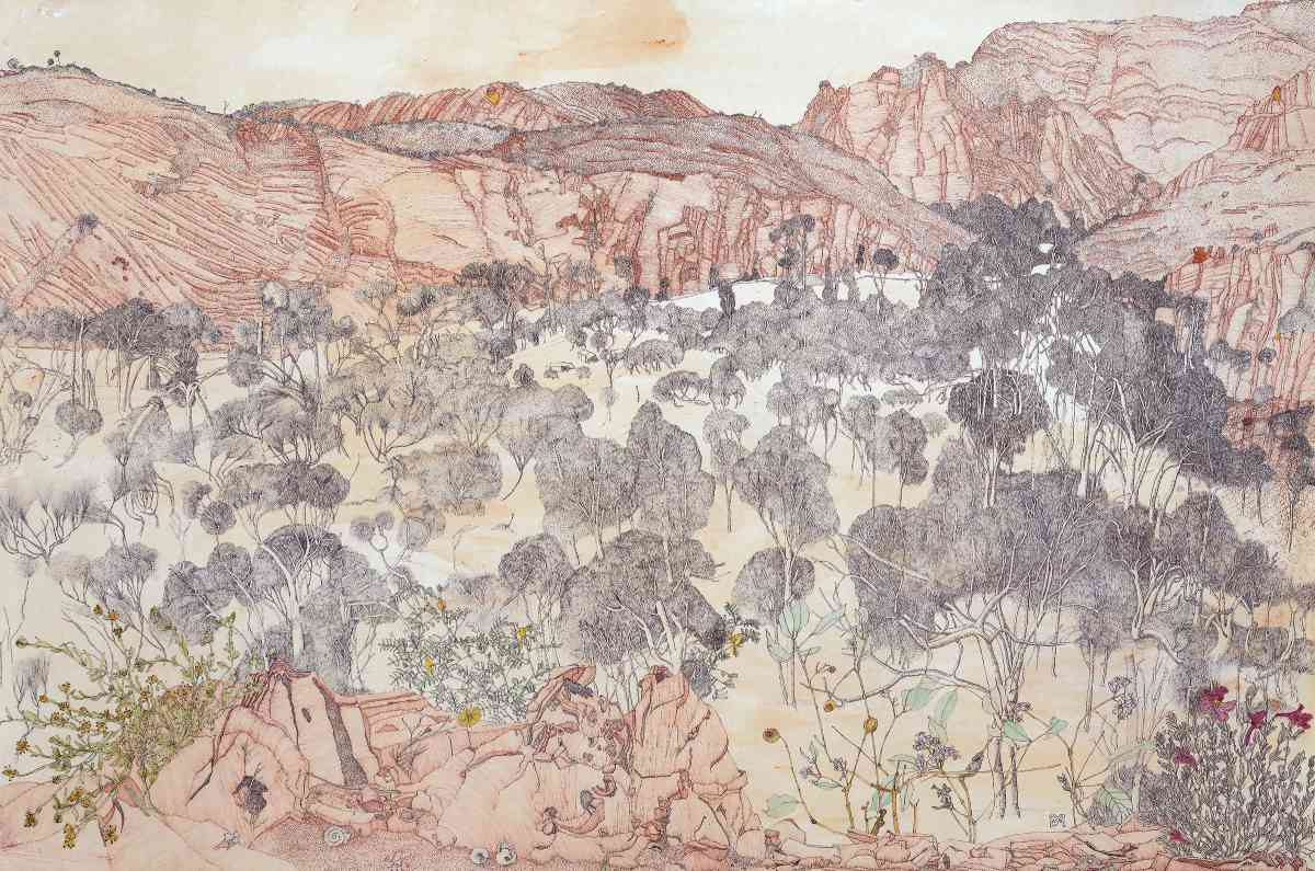 Ross River landscape with plants, watercolour ink drawing, 69 X 104cm