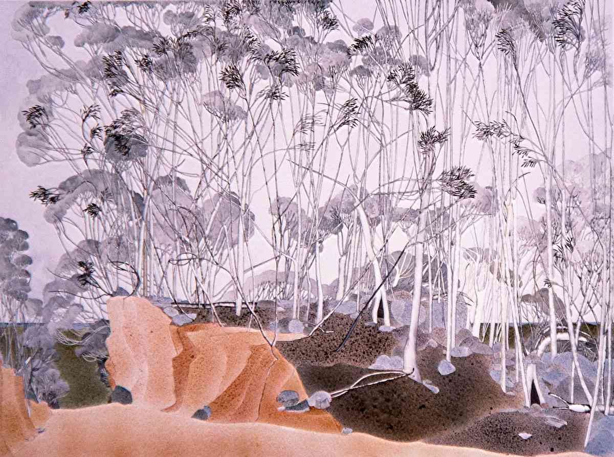 Showgums At Lake Eucumbene Watercolour 250 X 300Cm