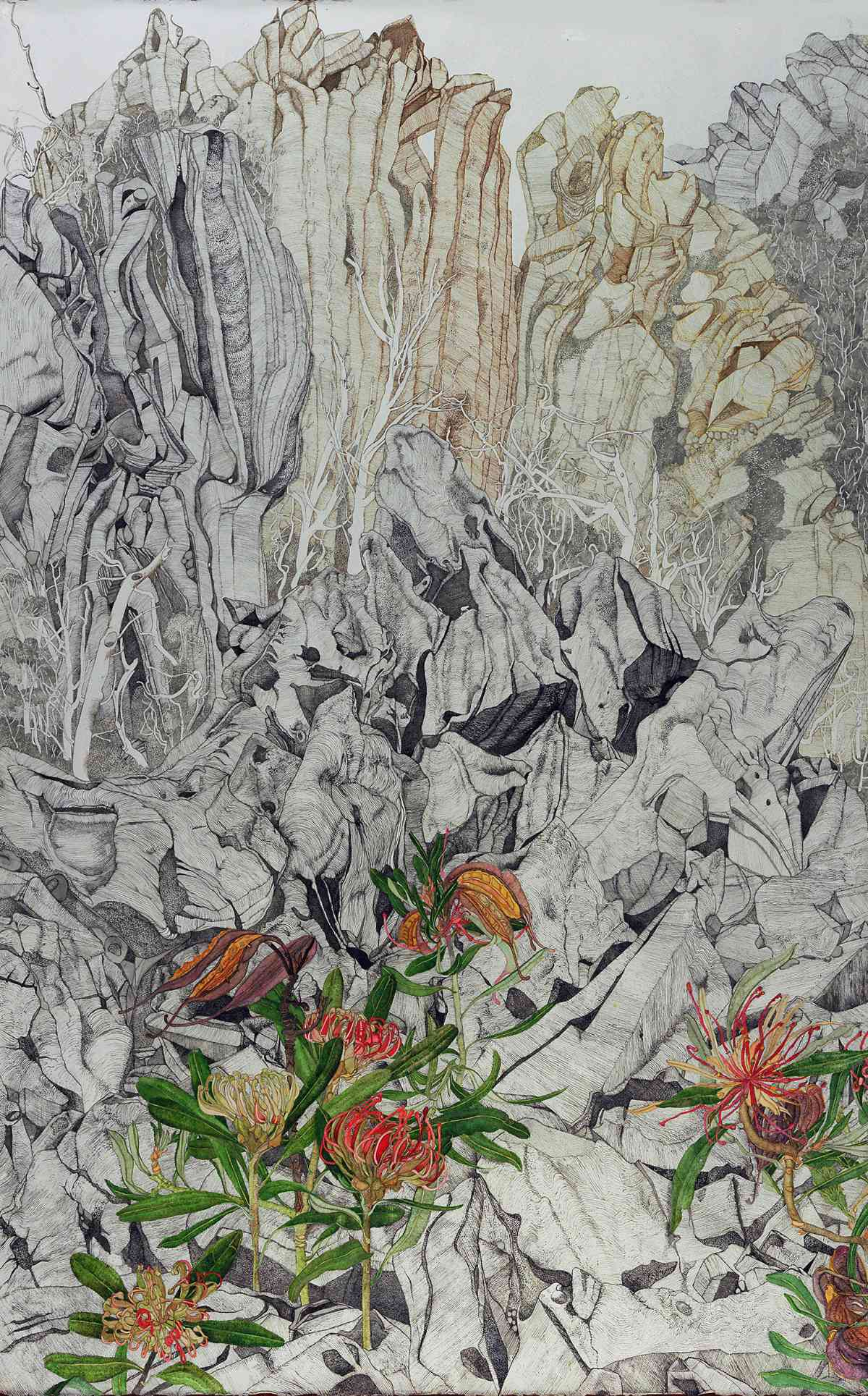 Waratahs above the Frost Line, Devil's Gullet, North West Tasmania, Watercolour, Diptych, 130 x  210cm